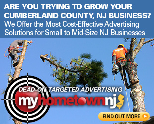 Cumberland County, NJ Tree Maintenance and Removal